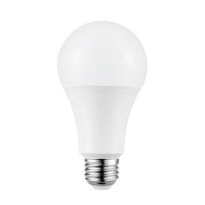 led a21 bulb